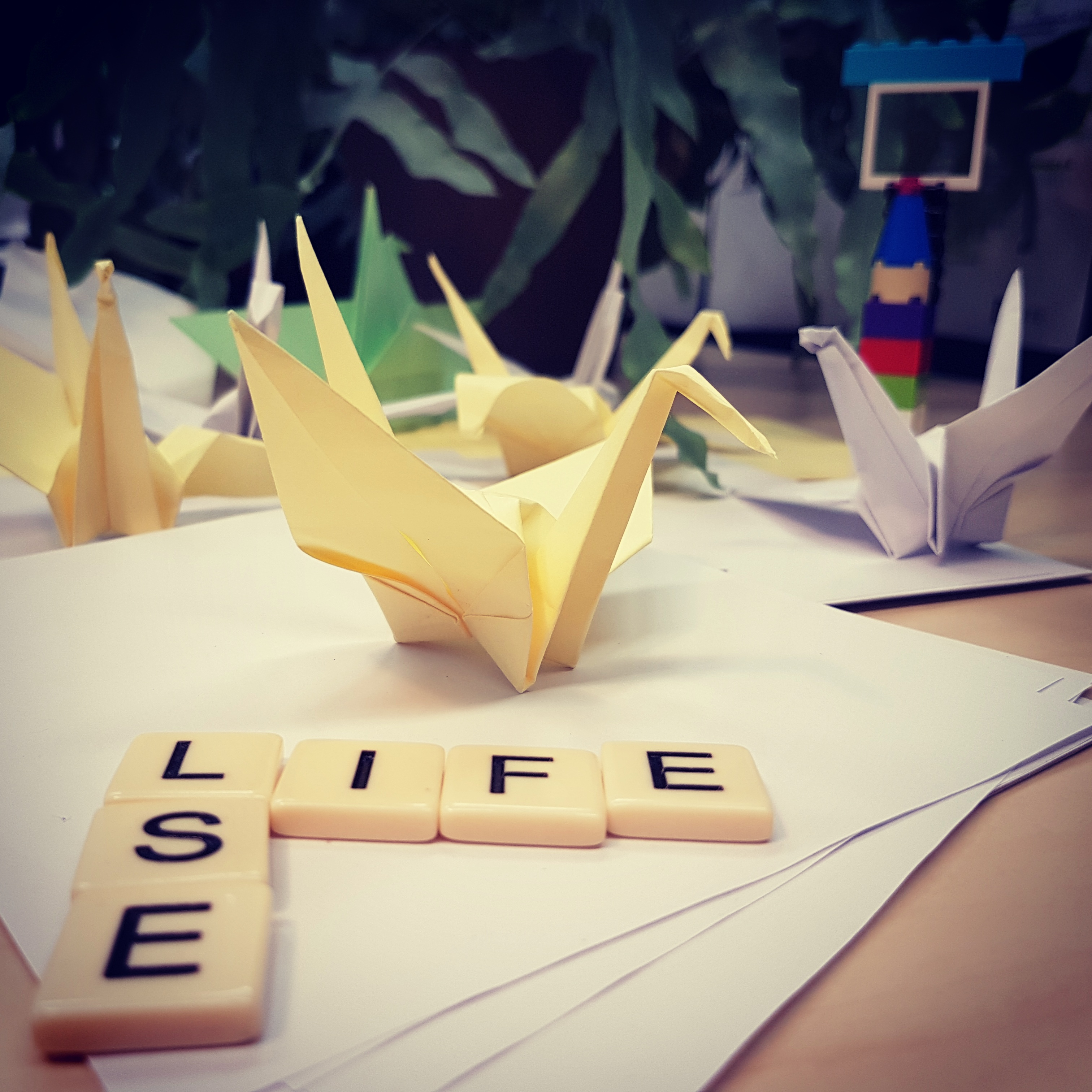 LSE Life